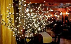 restoran savski venac docek nove godine